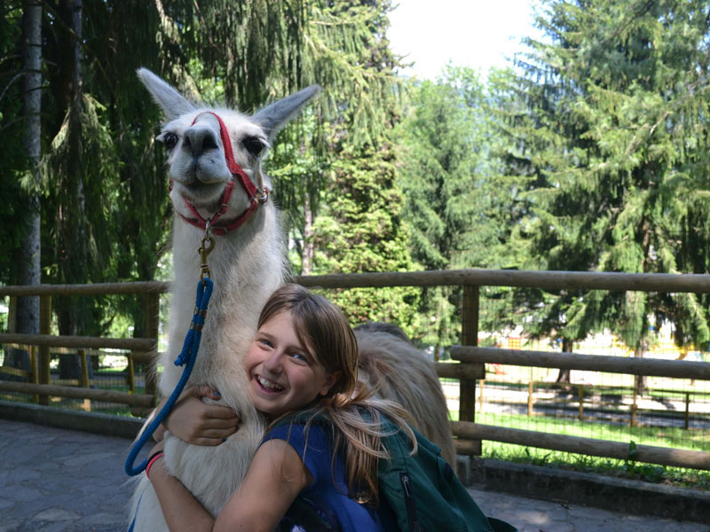 Trekking con i lama - vacanze avventura con i bambini a Bergamo