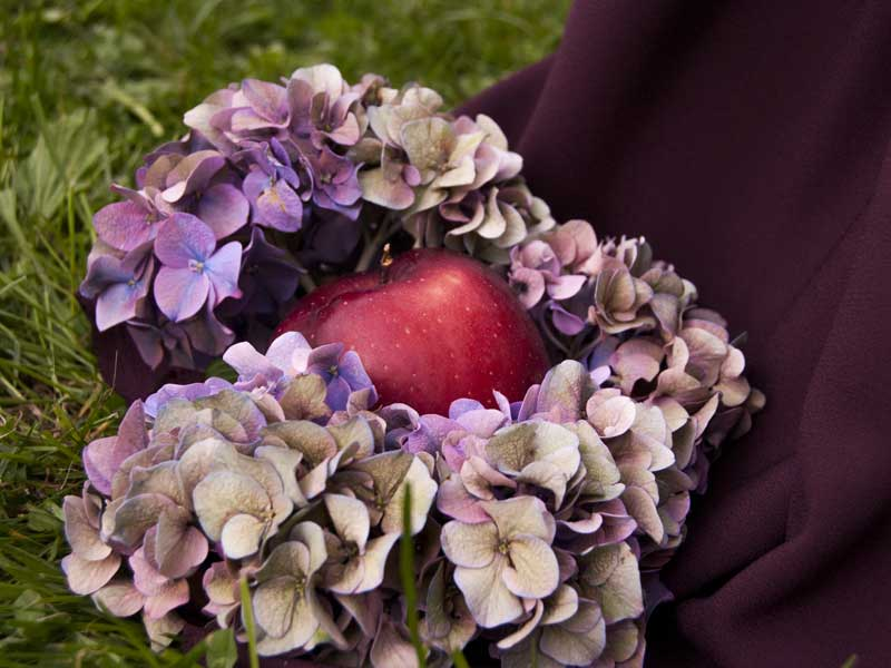 Allestimento matrimonio all'aperto