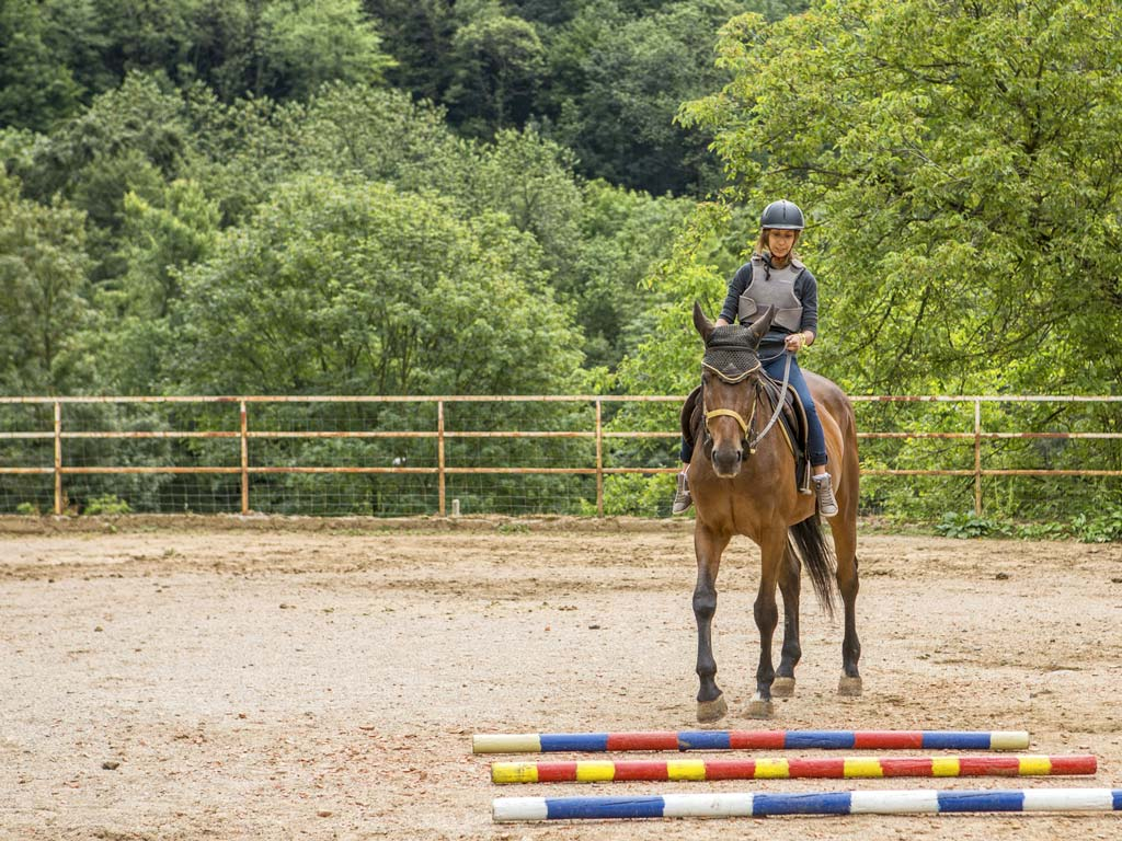 Lezioni di equitazione a Bergamo