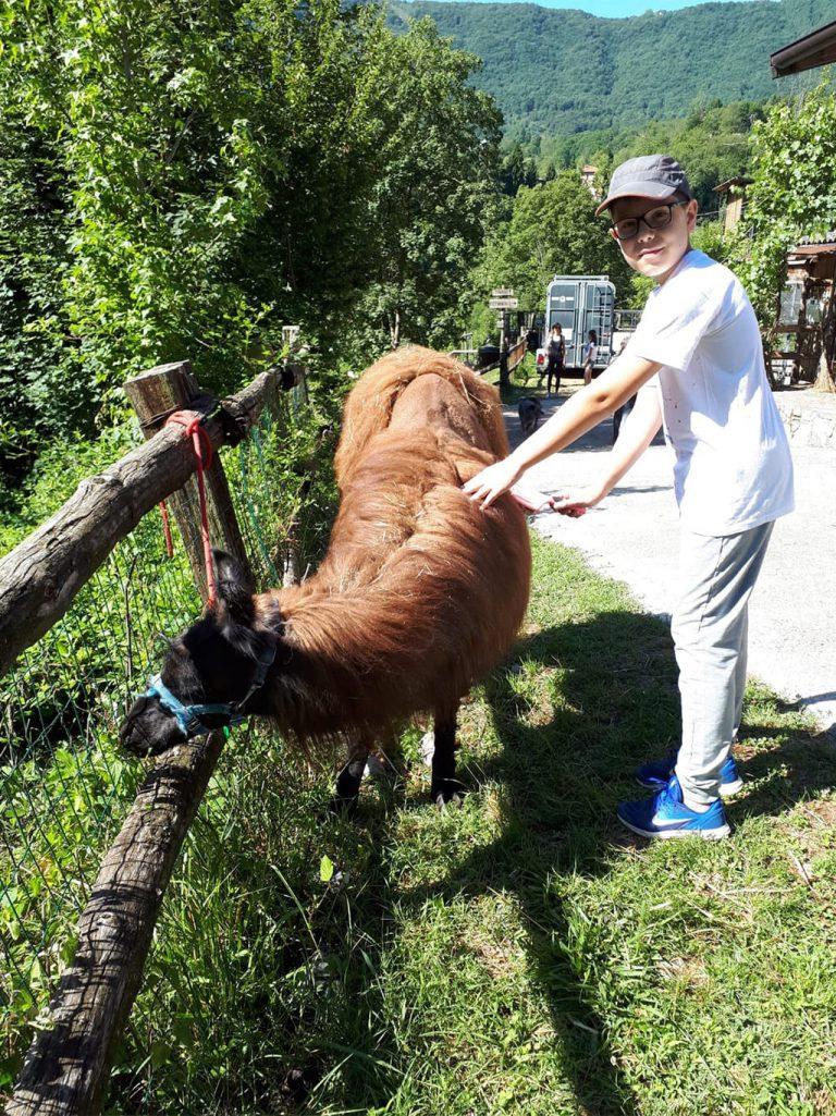 Campo estivo Bergamo - trekking con i lama - 14/20 luglio 2019 - 2