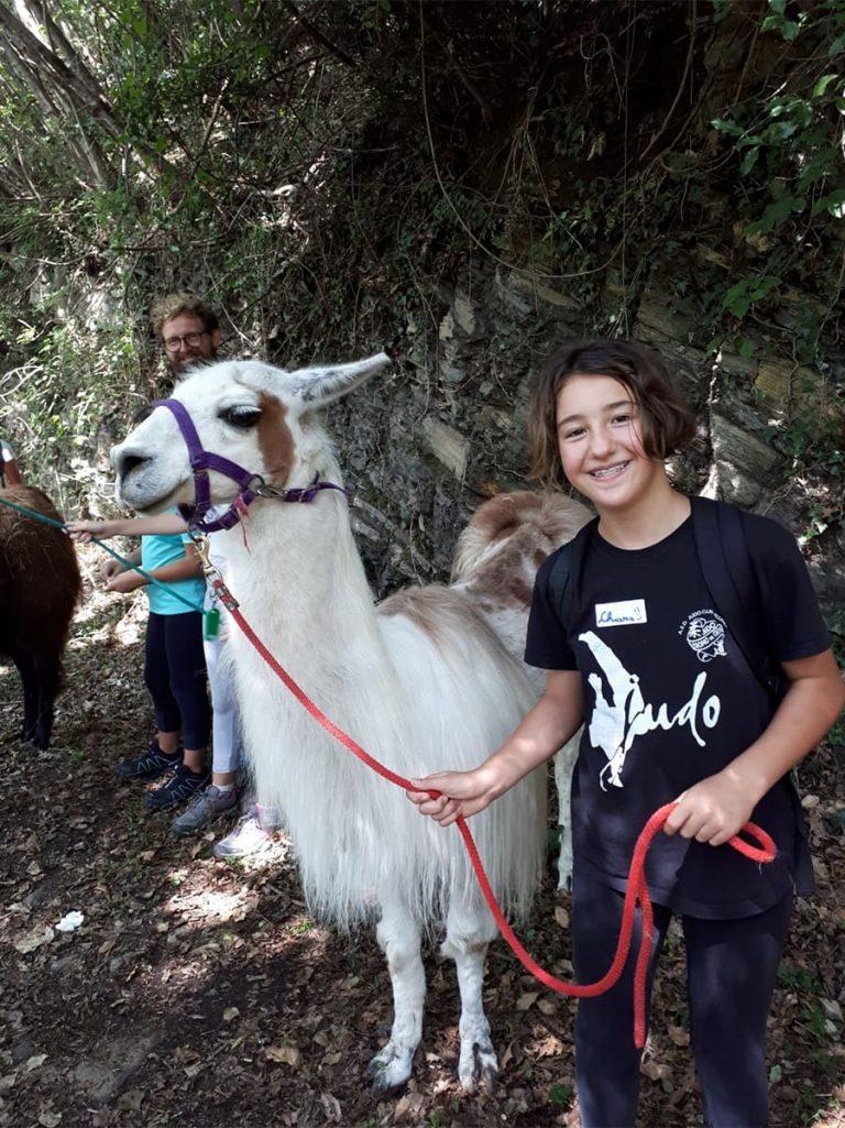Campo estivo Bergamo - trekking con i lama - 21/27 luglio 2019 - 2