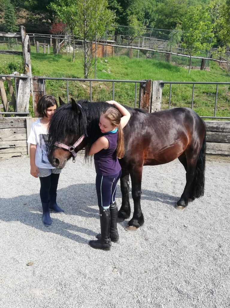 Campo estivo Bergamo - equitazione - 22/27 luglio 2019
