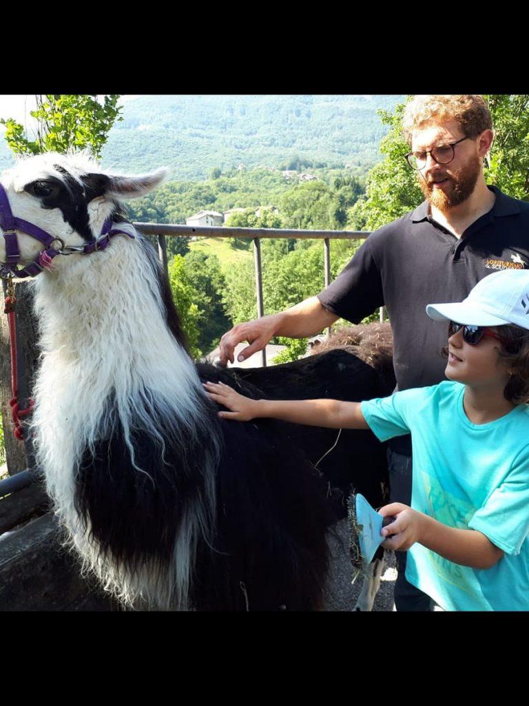 Campo estivo Bergamo - trekking con i lama - 3